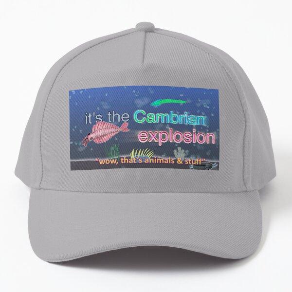 Cambrian Explosion wow Baseball Cap