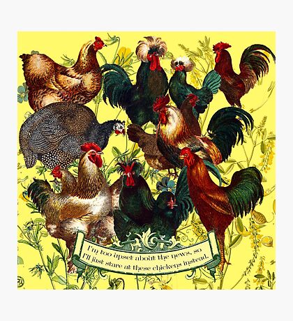 Gazing at Victorian Chickens 1 Photographic Print