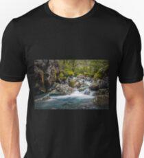 Upper Hollyford river Unisex T-Shirt