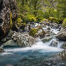 Upper Hollyford river by Paul Mercer