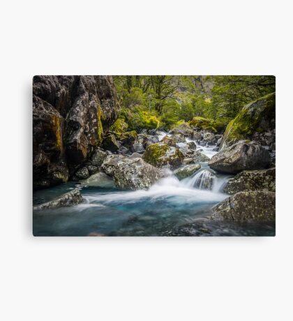 Upper Hollyford river Canvas Print