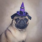 Peppa Pug Hates Halloween by Catherine Holmes