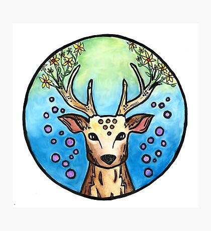 Flower Deer  Photographic Print
