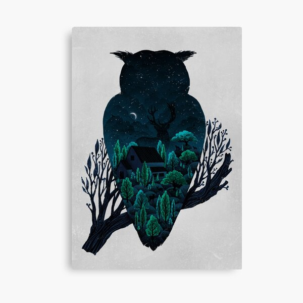 Owlscape Canvas Print