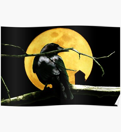 Black Crow ~ Harvest Moon Poster