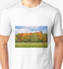 Changing Colour Unisex T-Shirt