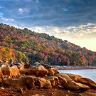 Cherokee Lake Color by Douglas  Stucky