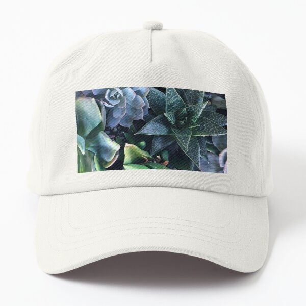 Contemporary, Sophisticated Succulents Art Photo Dad Hat