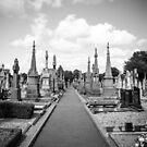 Glasnevin Cemetery by Martina Fagan