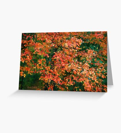 The Beauty of Autumn Out My Window Greeting Card