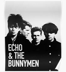 Image result for echo and the bunnymen poster