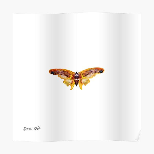 Butterfly I Poster