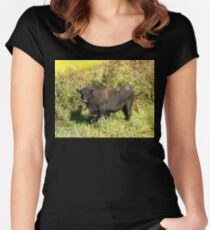 Bull Women's Fitted Scoop T-Shirt