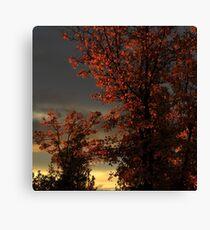 Autumn's First Light Canvas Print