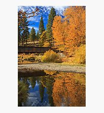 Bridge Over The Susan River Photographic Print