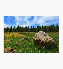Different Boulder Same Springtime Photographic Print