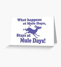 Mule Day Greeting Card
