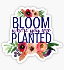 Bloom Where You Are Planted Flowers Sticker