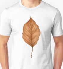 Beech leaf in autumn T-Shirt