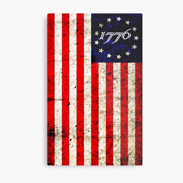 1776  Metal Print