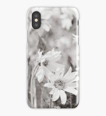 Sun Flowers iPhone Case/Skin