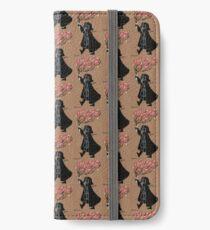 Darth Vader - Love iPhone Wallet/Case/Skin