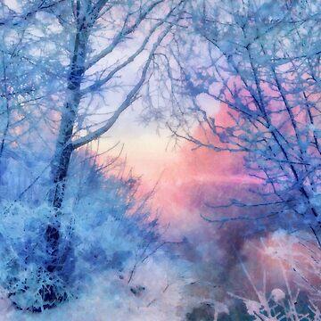 Winter evening by CatyArte