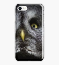 a great gray owl iPhone Case/Skin