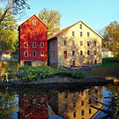 The Prallsville Mills by Lanis Rossi