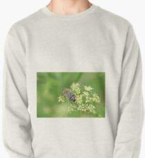 Harvesting Pullover Sweatshirt