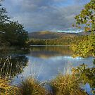 Rydal Water by Jamie  Green