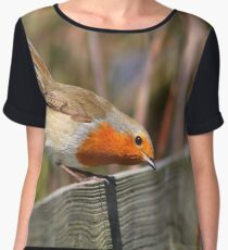 On the fence Women's Chiffon Top