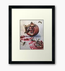 Pomegranate and Paper Wasps Framed Print