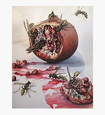 Pomegranate and Paper Wasps Photographic Print