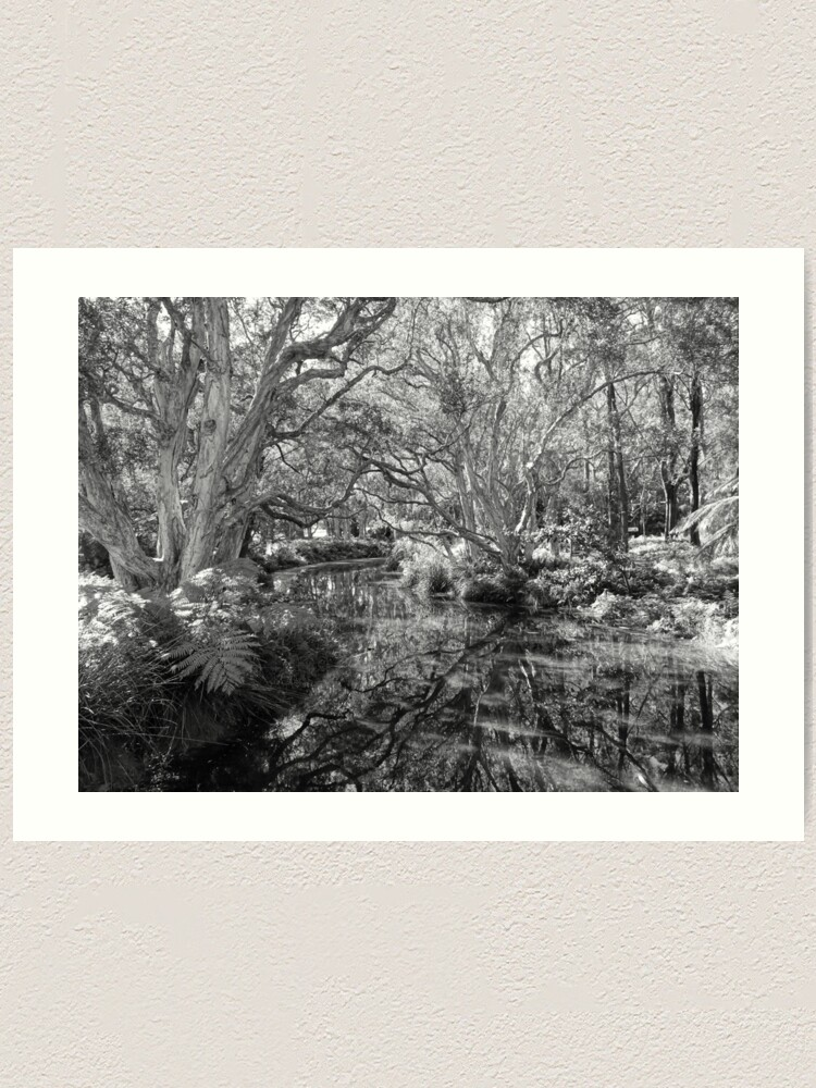 Alternate view of Reflections 2021/07/29 Art Print