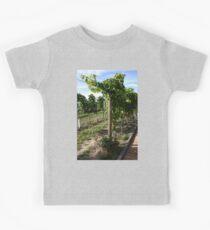 Vineyard #5 Kids Clothes
