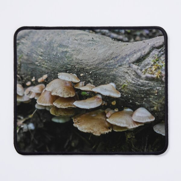 Brown Mushrooms on a Log Mouse Pad