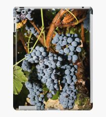 Grapes Vineyard  iPad Case/Skin