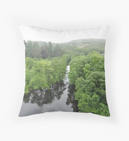 Fly...And See For Yourself Throw Pillow