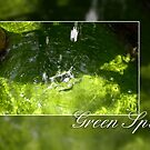 Green Spa by Aira-Art