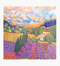 Herbes De Provence Photographic Print