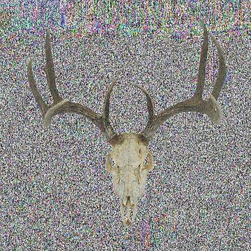 Deer Skull by Aid3lis