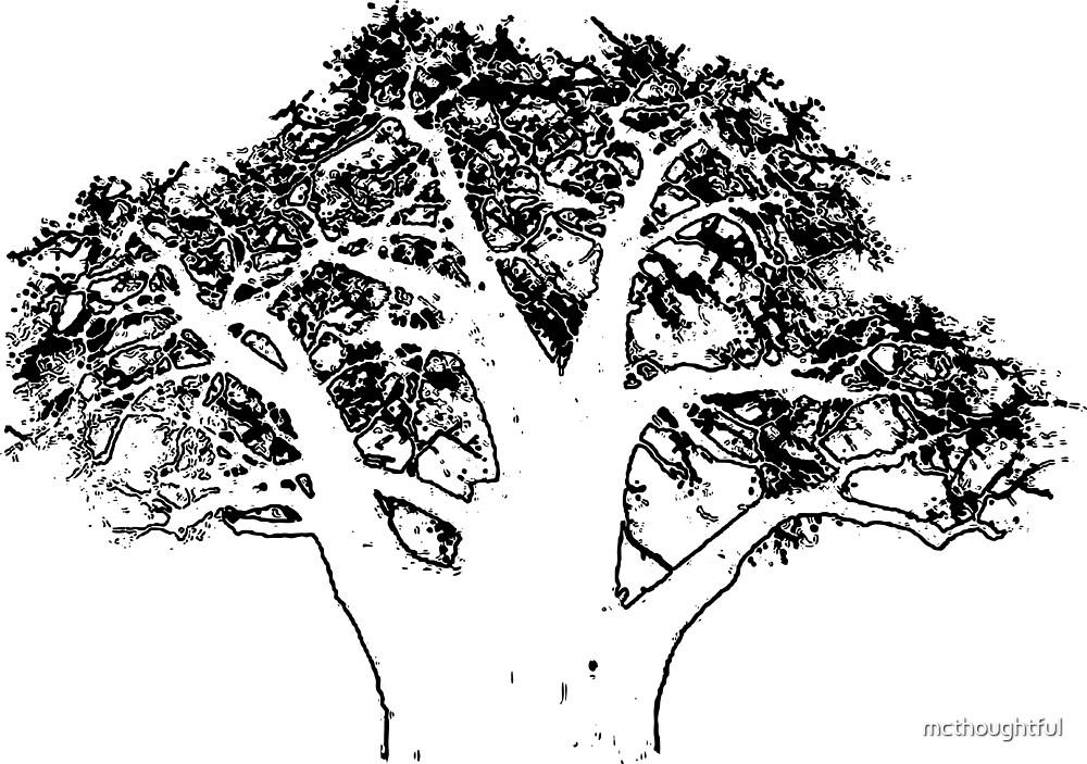 Adansonia digitata by mcthoughtful