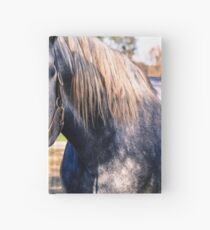 Equine Greeting Hardcover Journal