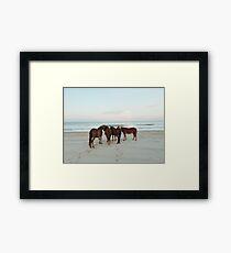 Lámina enmarcada Reunión costera del caballo
