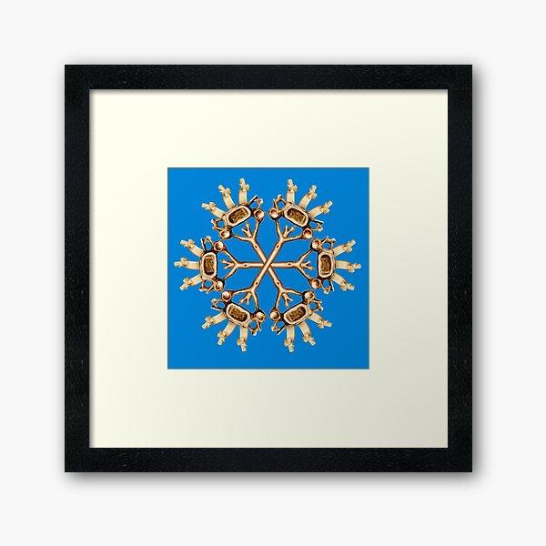 Cervical Snowflake-Blue Framed Art Print