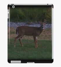 Spike Dusk iPad Case/Skin