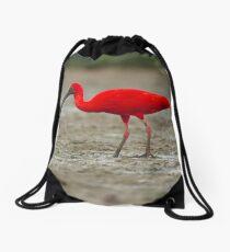 Scarlet Ibis Drawstring Bag