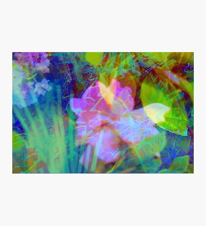 Squiggly jiggly flower print Photographic Print