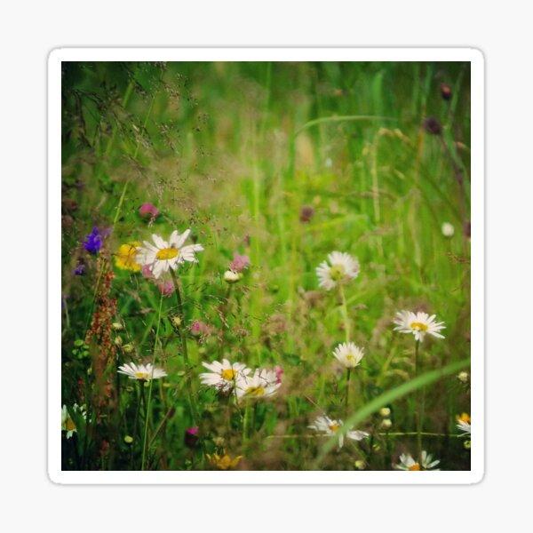 Floral nature Sticker